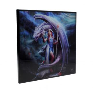 Anne Stokes Small Dragon Mage Gothic Crystal Clear Picture